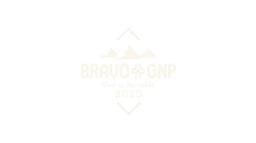 Bravo gnp logo 2020 02